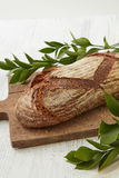 Homemade fresh bread with leaves Stock Image