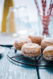 Homemade fresh donuts on cooling tray stock image