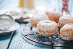 Homemade fresh donuts on cooling tray stock photos