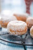 Homemade fresh donuts on cooling tray royalty free stock photo