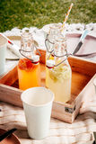 Homemade fresh fruit juice for a summer picnic Royalty Free Stock Photography
