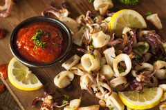 Homemade Fresh Grilled Calamari stock photo