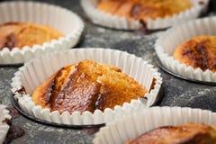 Homemade fresh muffins Royalty Free Stock Photo