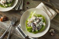 Homemade Fresh Waldorf Salad Royalty Free Stock Photography