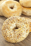 Homemade Fresh Whole Grain Bagel Stock Images
