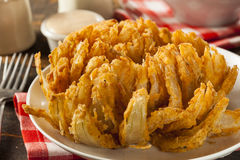 Homemade Fried Bloomin Onion Royalty Free Stock Photography