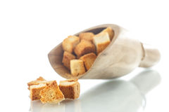 Homemade fried bread croutons Stock Image