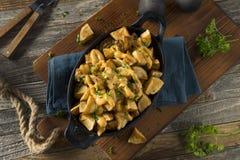 Homemade Fried Spanish Patatas Bravas Stock Image