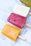 Homemade frozen ice cream popsicles Royalty Free Stock Photo