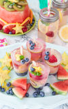 Homemade frozen popsicles royalty free stock photo