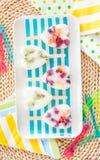 Homemade frozen popsicles Stock Photos
