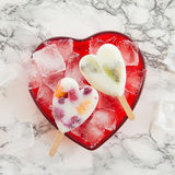 Homemade frozen popsicles Royalty Free Stock Images