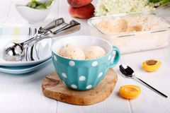 Homemade fruit apricot ice-cream in a cup stock photography