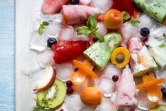 Homemade fruit ice cream, kiwi, strawberry, peach with mint Royalty Free Stock Image
