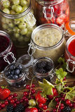 Homemade fruit jam in the jar Stock Images