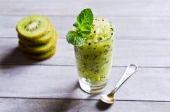 Homemade fruit sorbet Royalty Free Stock Photography