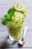 Homemade fruit sorbet Stock Photos