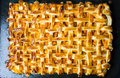 Homemade fruit sweet pie with golden crust Stock Images