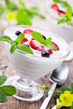 Homemade Fruit Yogurt Stock Images