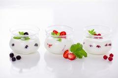 Homemade Fruit Yogurts Stock Image