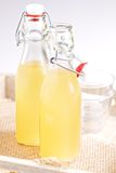 Homemade ginger ale Stock Image