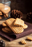 Homemade ginger cookies Royalty Free Stock Photos
