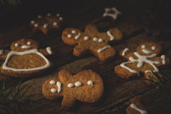Homemade ginger cookies Royalty Free Stock Image