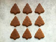 Homemade gingerbread Christmas cookies cooling on kitchen countertop Stock Photography