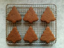 Homemade gingerbread Christmas cookies cooling on metal rack Stock Photos