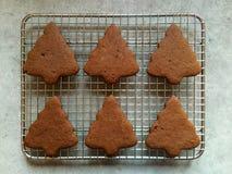 Homemade gingerbread Christmas cookies cooling on metal rack Stock Photos