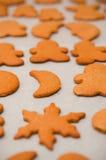 Homemade gingerbread Christmas cookies Stock Photos