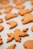 Homemade gingerbread Christmas cookies Stock Photography