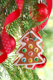 Homemade gingerbread cookie hanging on christmas tree Royalty Free Stock Photos