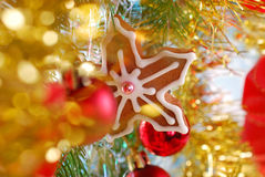 Homemade gingerbread cookie hanging on christmas tree Royalty Free Stock Photo