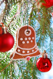 Homemade gingerbread cookie hanging on christmas tree Royalty Free Stock Photography