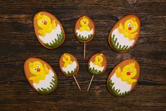 Homemade gingerbread cookies as newborn chickens stock photography