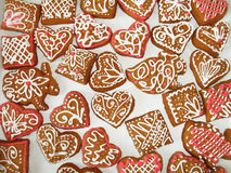Homemade gingerbread cookies Stock Images
