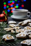 Homemade gingerbread and a cup of tea Stock Photography