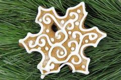 Homemade gingerbread on fir tree Stock Photos