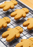 Homemade gingerbread Royalty Free Stock Photos