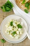 Homemade gnocchi with ricotta, cheese and spinach on a light plate. royalty free stock photography