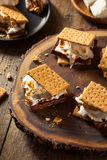 Homemade Gooey Marshmallow S'mores. With Chocolate Royalty Free Stock Photos