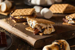 Homemade Gooey S'mores with Chocolate Royalty Free Stock Images