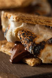 Homemade Gooey S'mores with Chocolate Stock Photography