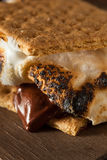 Homemade Gooey S'mores with Chocolate. And Marshmallows Stock Images