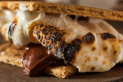 Homemade Gooey S'mores with Chocolate Royalty Free Stock Photo