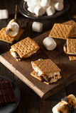 Homemade Gooey S'mores with Chocolate Royalty Free Stock Image