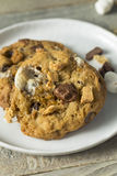 Homemade Gooey Smores Cookies. With Marshmallows Chocolate and Graham Crackers Royalty Free Stock Image