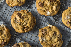 Homemade Gooey Smores Cookies stock images