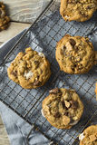 Homemade Gooey Smores Cookies royalty free stock photography